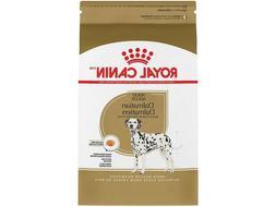 breed health nutrition dalmatian adult dry dog