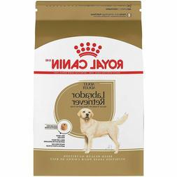 breed health nutrition labrador retriever adult dry