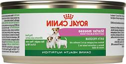 Royal Canin Canine Health Nutrition Starter Mousse Canned Do