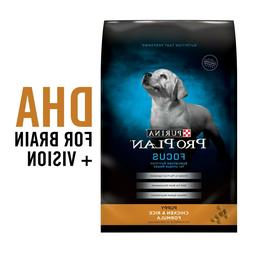 Purina Pro Plan Dry Puppy Food, FOCUS Chicken & Rice Formula