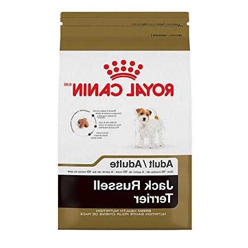 519403 breed health nutrition jack