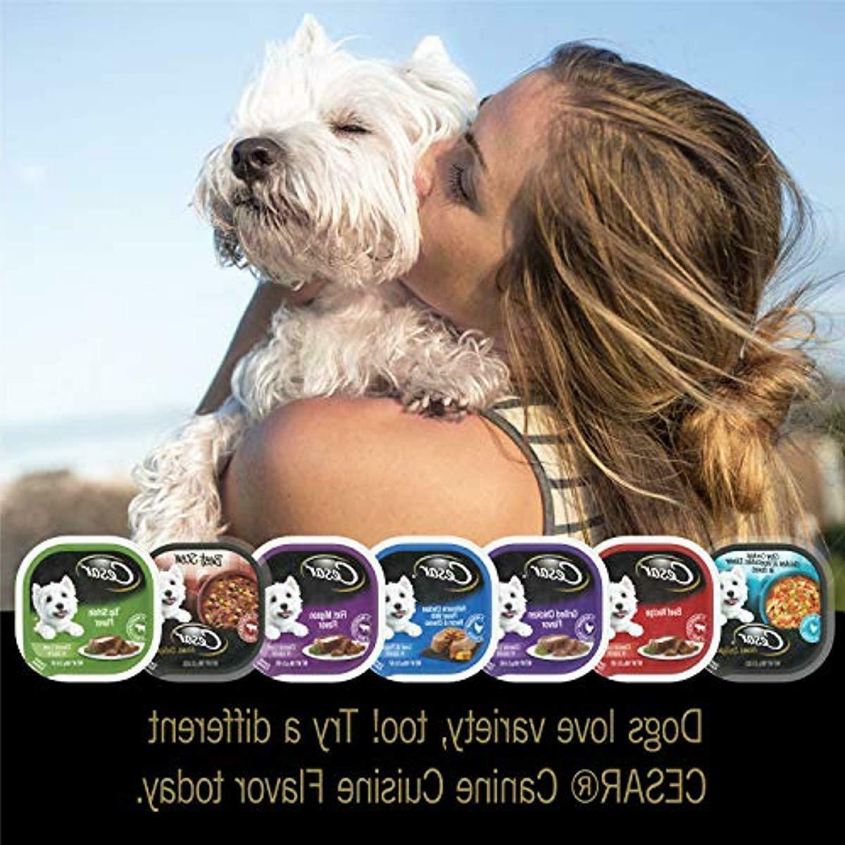 CESAR Adult Dog Food Pack, 3.5 oz.