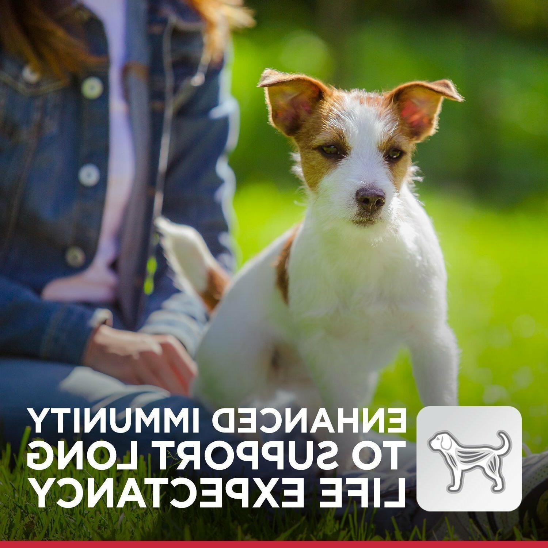 Dry Dog Small Toy Breed Lamb Rice 4.5lb 15.5lb