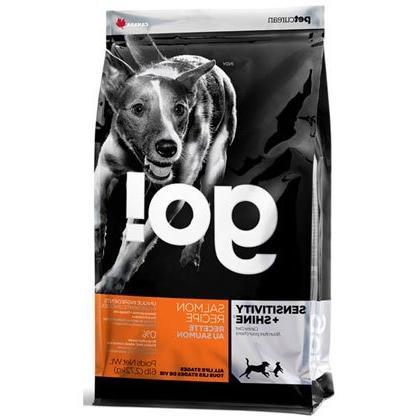 go dry dog food