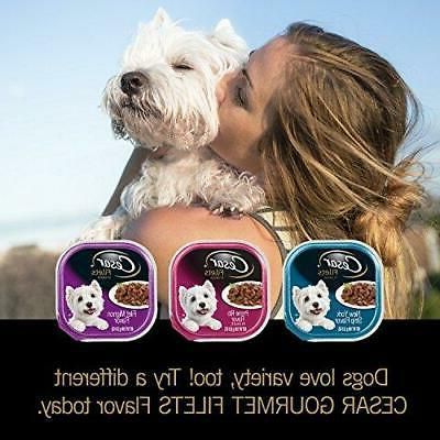 CESAR Dog Food Mignon & New Flavors Variety