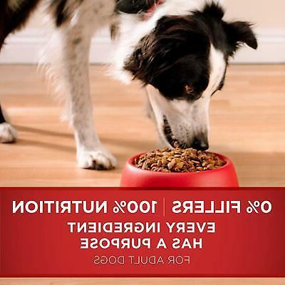 Purina ONE Dog and Rice 31.1 Lb. Bag