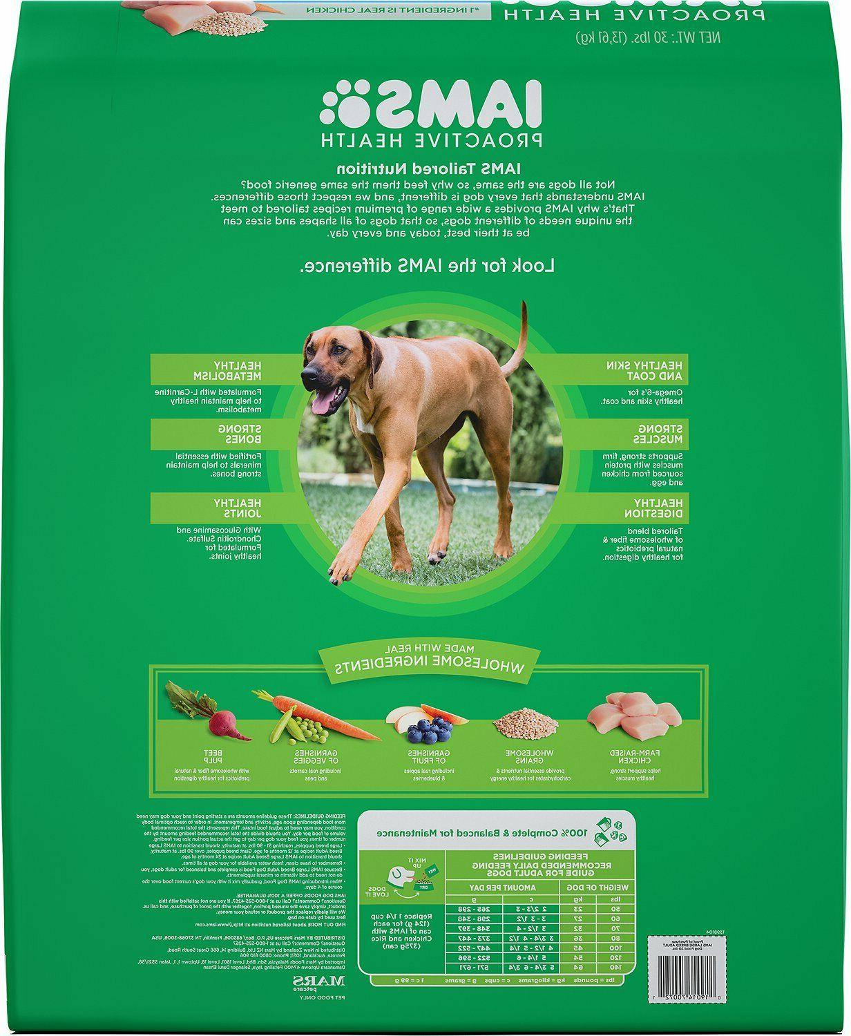 Iams ProActive Large Breed Dry Dog Food - 30lb bag -
