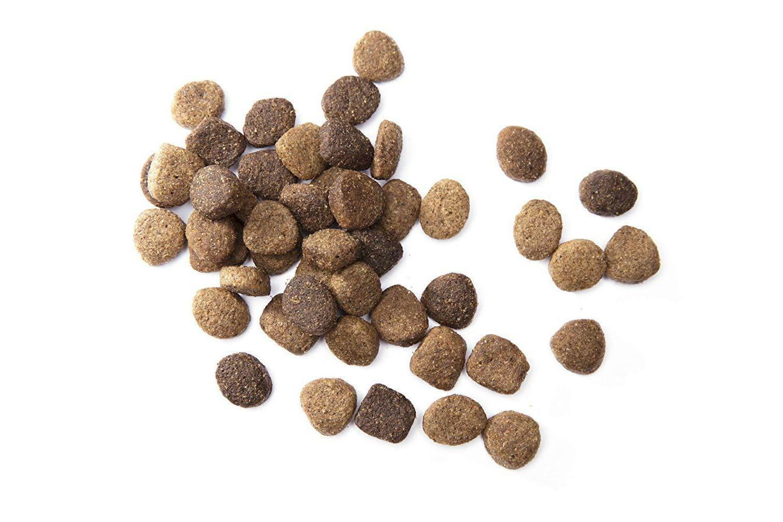 Iams Proactive Large Breed Adult Dry Dog Food -