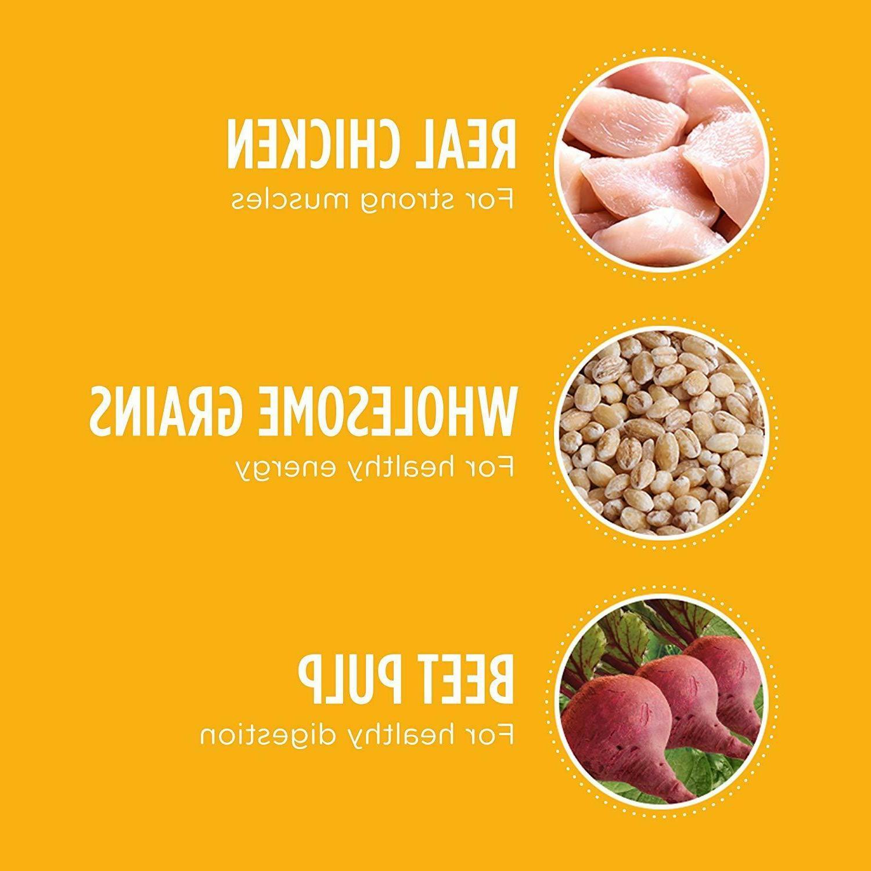 Iams Proactive Dry Food - Chicken
