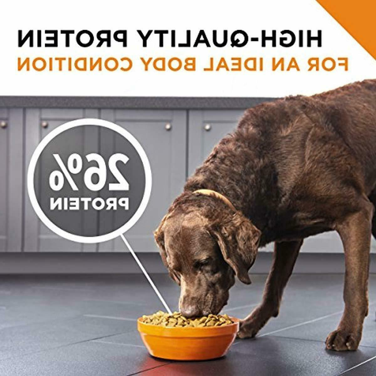 Purina Pro Plan SAVOR Shredded With Adult Dry Dog