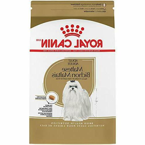royal canin breed health nutrition maltese adult