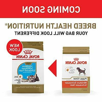 Royal Puppy Dog 2.5 bag
