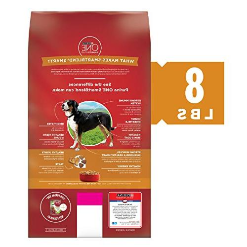 Purina ONE SmartBlend Chicken & Adult Dry - lb.