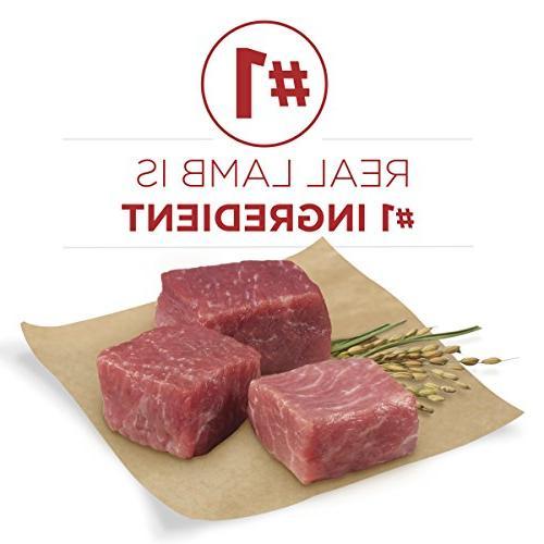 Purina Lamb & Rice Adult -