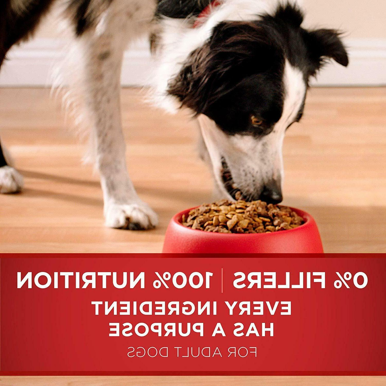 Purina SmartBlend Dog Lamb Rice, 8 lb