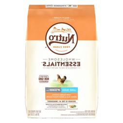 NUTRO Wholesome Essentials Large Breed Senior Dog Food - Chi