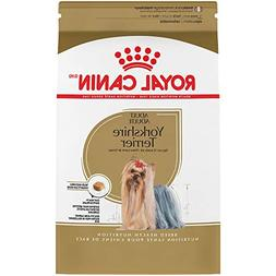 breed health nutrition yorkshire terrier